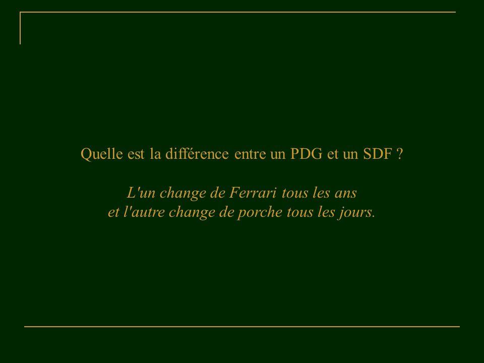 Quelle est la différence entre un PDG et un SDF