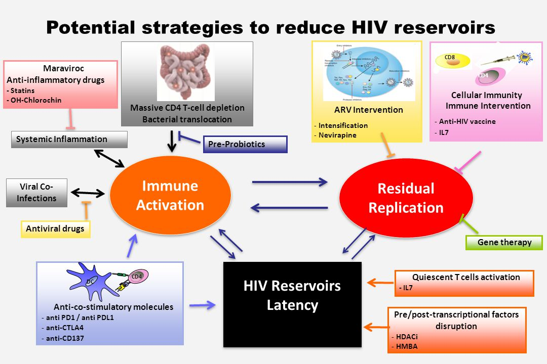Potential strategies to reduce HIV reservoirs