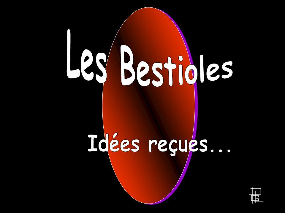 Les Bestioles Idées reçues...