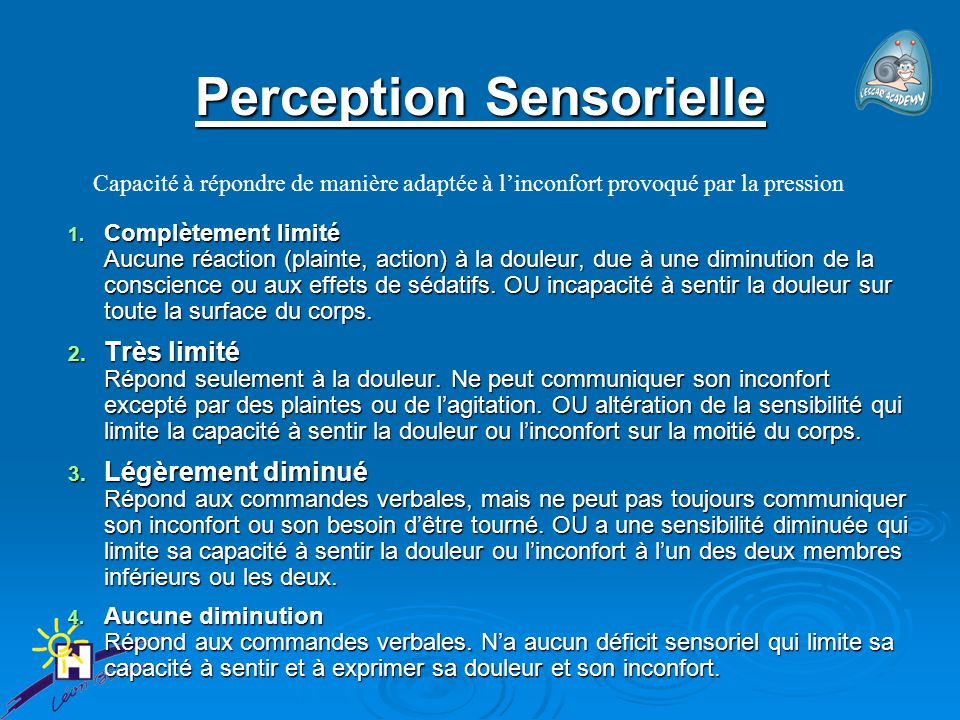 Perception Sensorielle