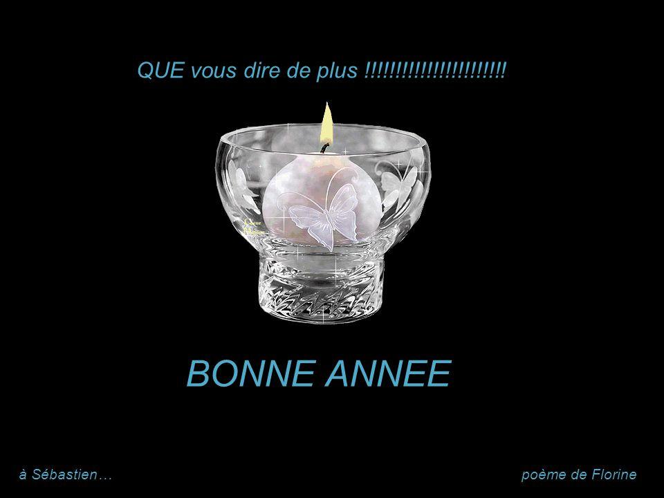 BONNE ANNEE QUE vous dire de plus !!!!!!!!!!!!!!!!!!!!!!! à Sébastien…