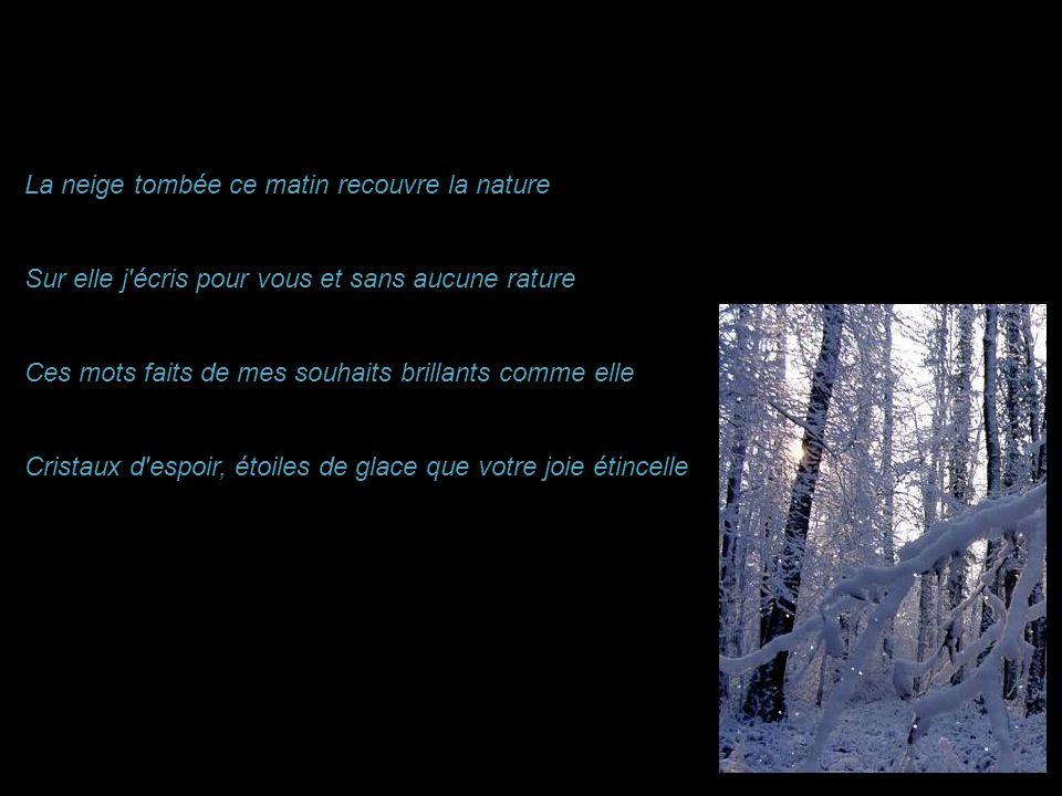 La neige tombée ce matin recouvre la nature