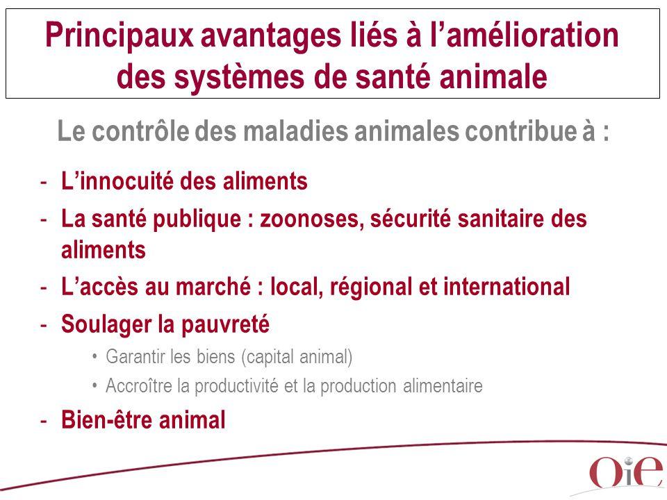 Le contrôle des maladies animales contribue à :