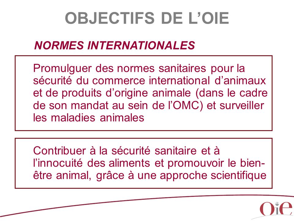OBJECTIFS DE L'OIE NORMES INTERNATIONALES