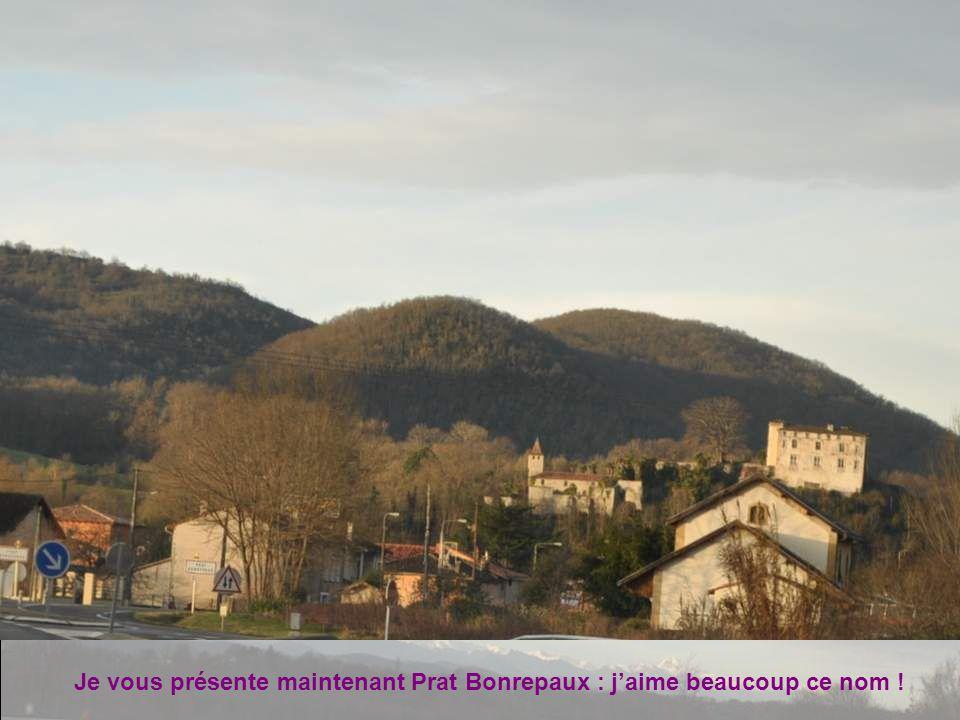 Je vous présente maintenant Prat Bonrepaux : j'aime beaucoup ce nom !