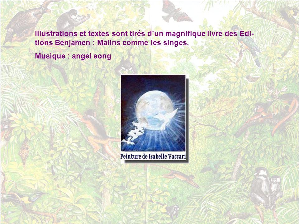 Illustrations et textes sont tirés d'un magnifique livre des Edi-tions Benjamen : Malins comme les singes.