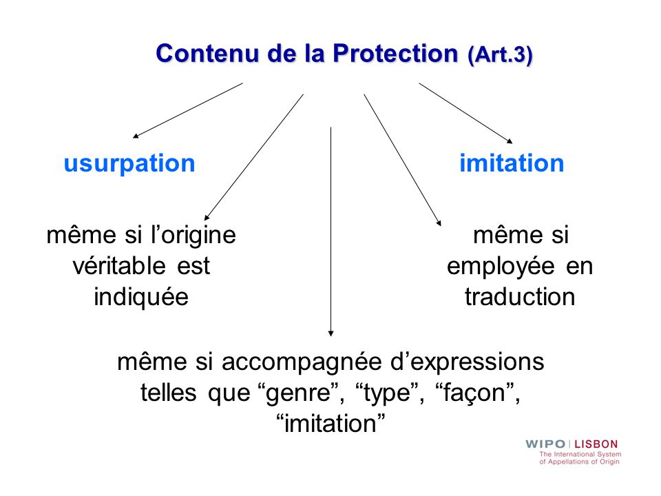 Contenu de la Protection (Art.3)