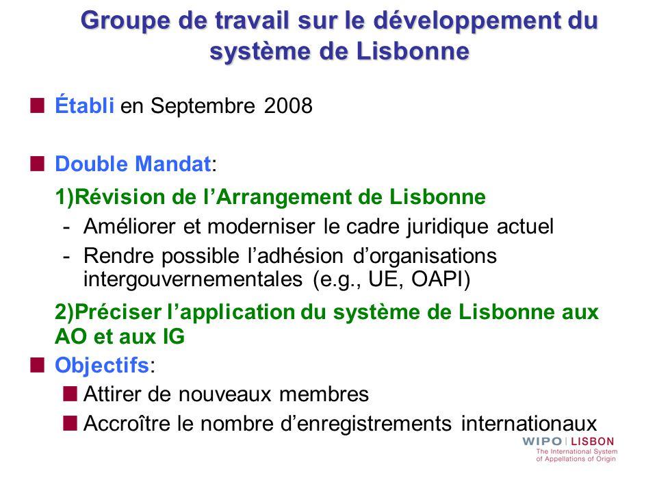 Groupe de travail sur le développement du système de Lisbonne