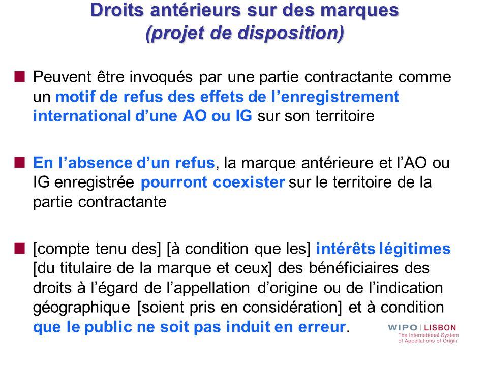 Droits antérieurs sur des marques (projet de disposition)