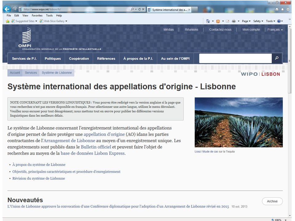 Site web du Système de Lisbonne