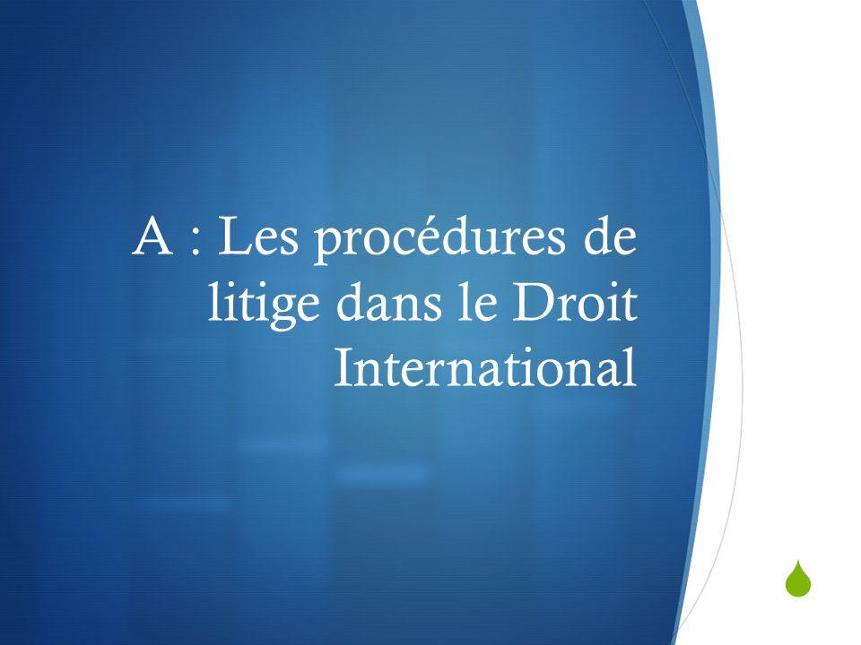 A : Les procédures de litige dans le Droit International