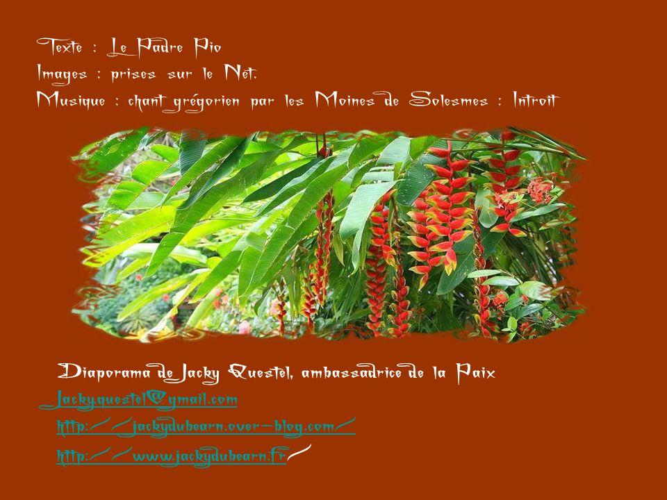 Texte : Le Padre Pio Images : prises sur le Net. Musique : chant grégorien par les Moines de Solesmes : Introit.