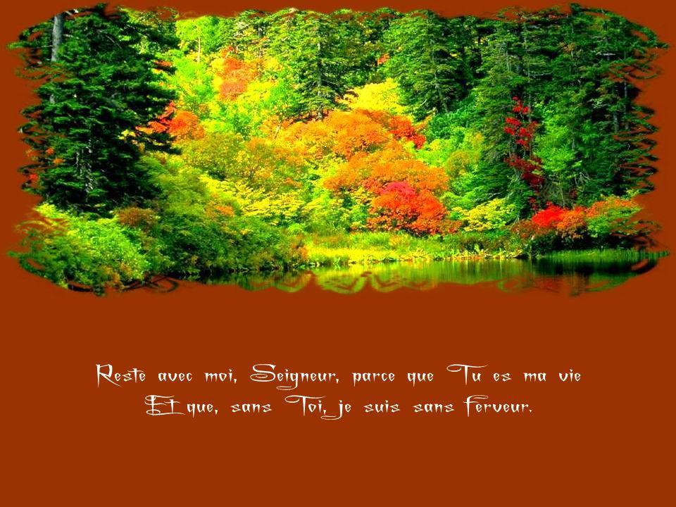 Reste avec moi, Seigneur, parce que Tu es ma vie