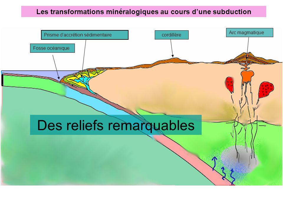 Les transformations minéralogiques au cours d'une subduction