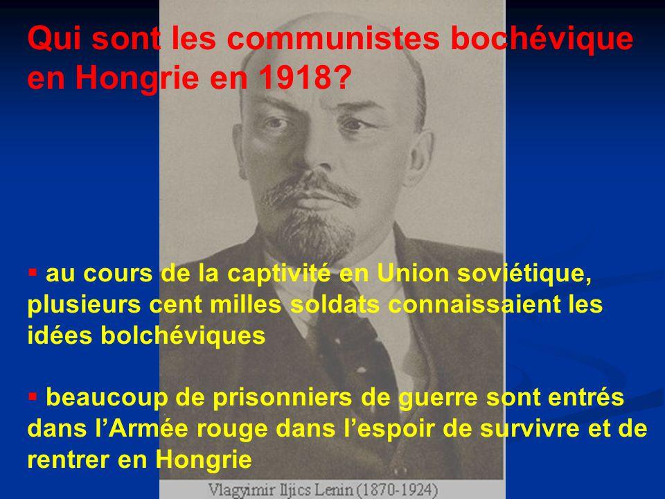 Qui sont les communistes bochévique en Hongrie en 1918