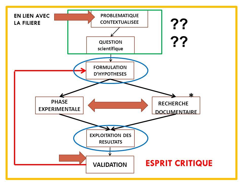 ESPRIT CRITIQUE VALIDATION EN LIEN AVEC LA FILIERE