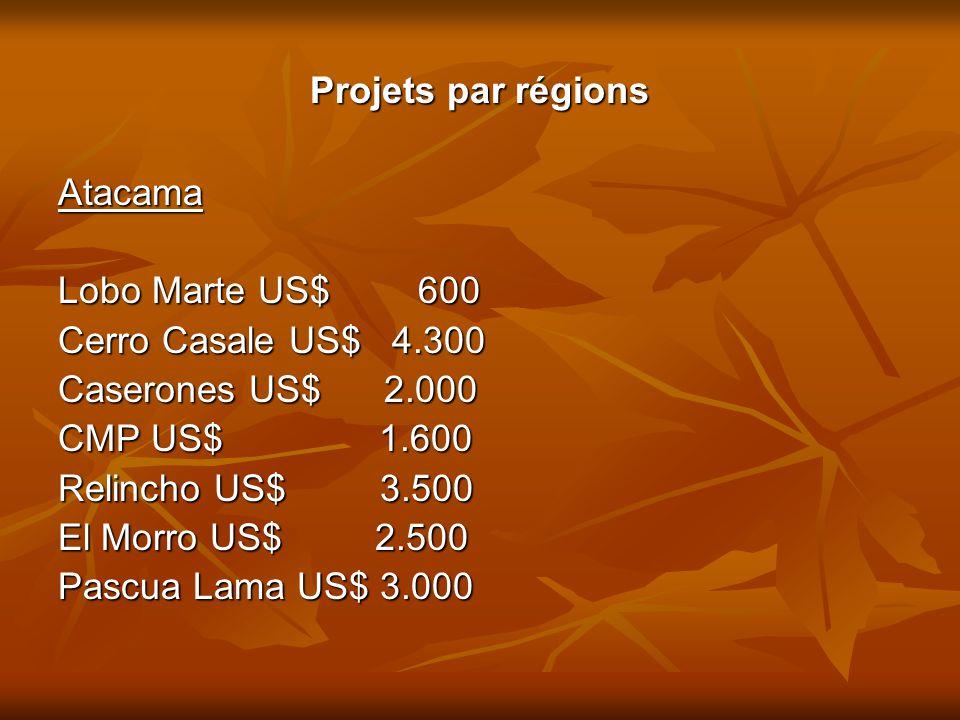 Projets par régions Atacama. Lobo Marte US$ 600. Cerro Casale US$ 4.300. Caserones US$ 2.000.