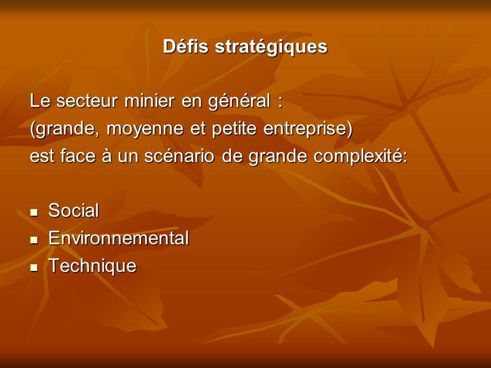Défis stratégiques Le secteur minier en général : (grande, moyenne et petite entreprise) est face à un scénario de grande complexité: