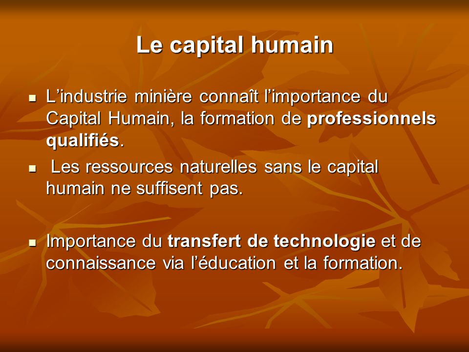 Le capital humain L'industrie minière connaît l'importance du Capital Humain, la formation de professionnels qualifiés.