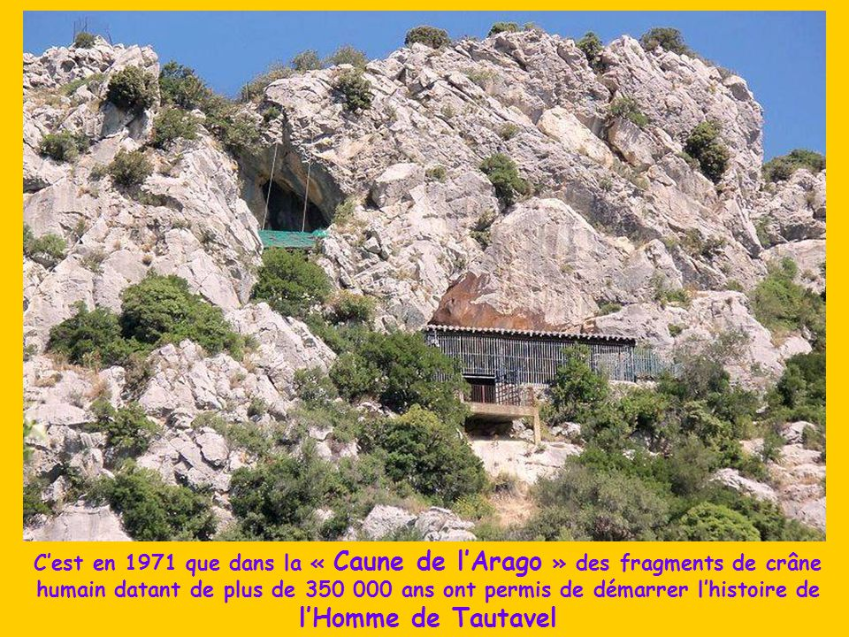 C'est en 1971 que dans la « Caune de l'Arago » des fragments de crâne humain datant de plus de 350 000 ans ont permis de démarrer l'histoire de l'Homme de Tautavel