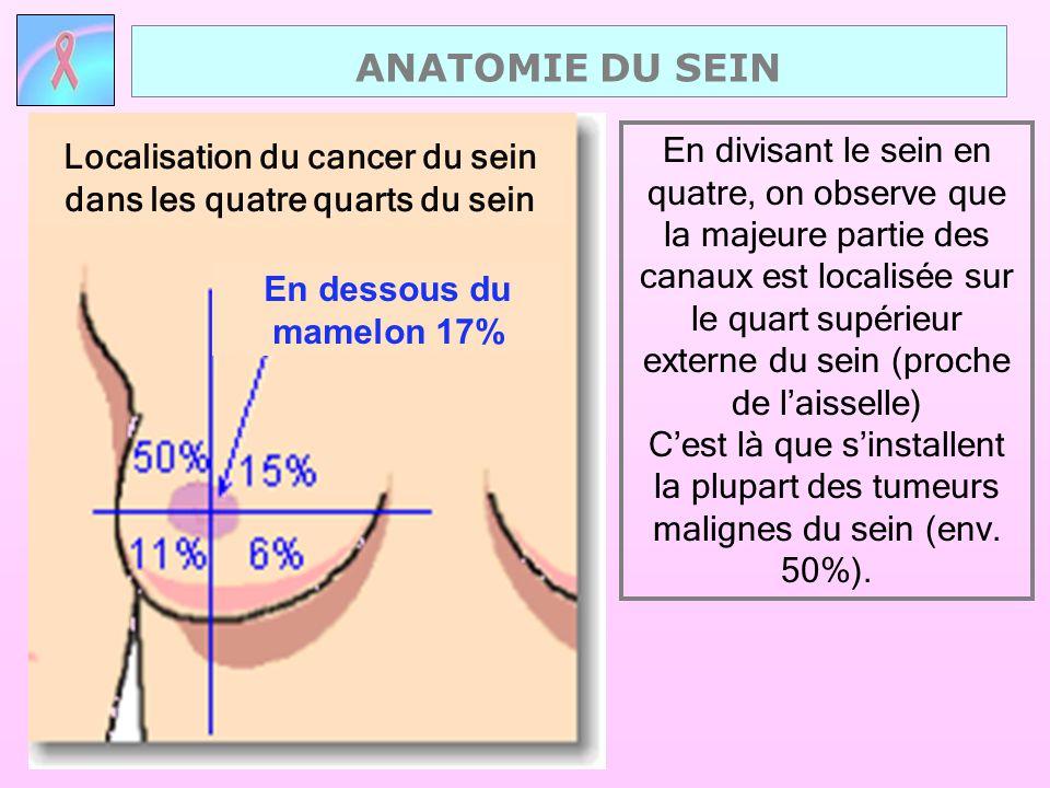 Localisation du cancer du sein dans les quatre quarts du sein