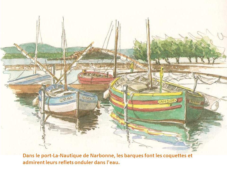 Dans le port-La-Nautique de Narbonne, les barques font les coquettes et admirent leurs reflets onduler dans l eau.