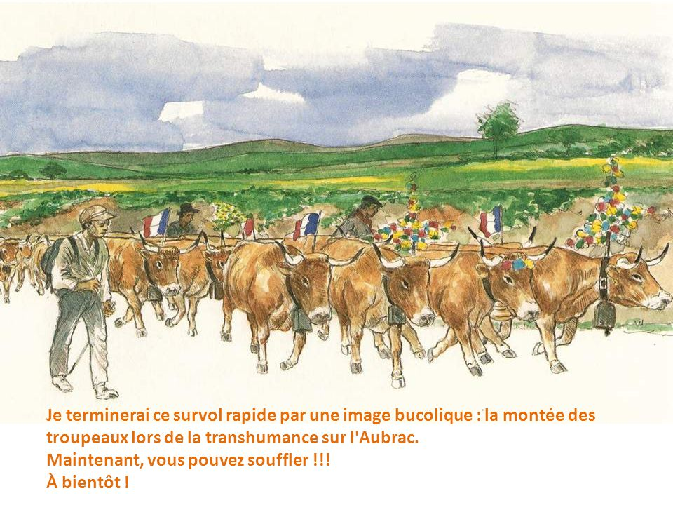 Je terminerai ce survol rapide par une image bucolique : la montée des troupeaux lors de la transhumance sur l Aubrac.