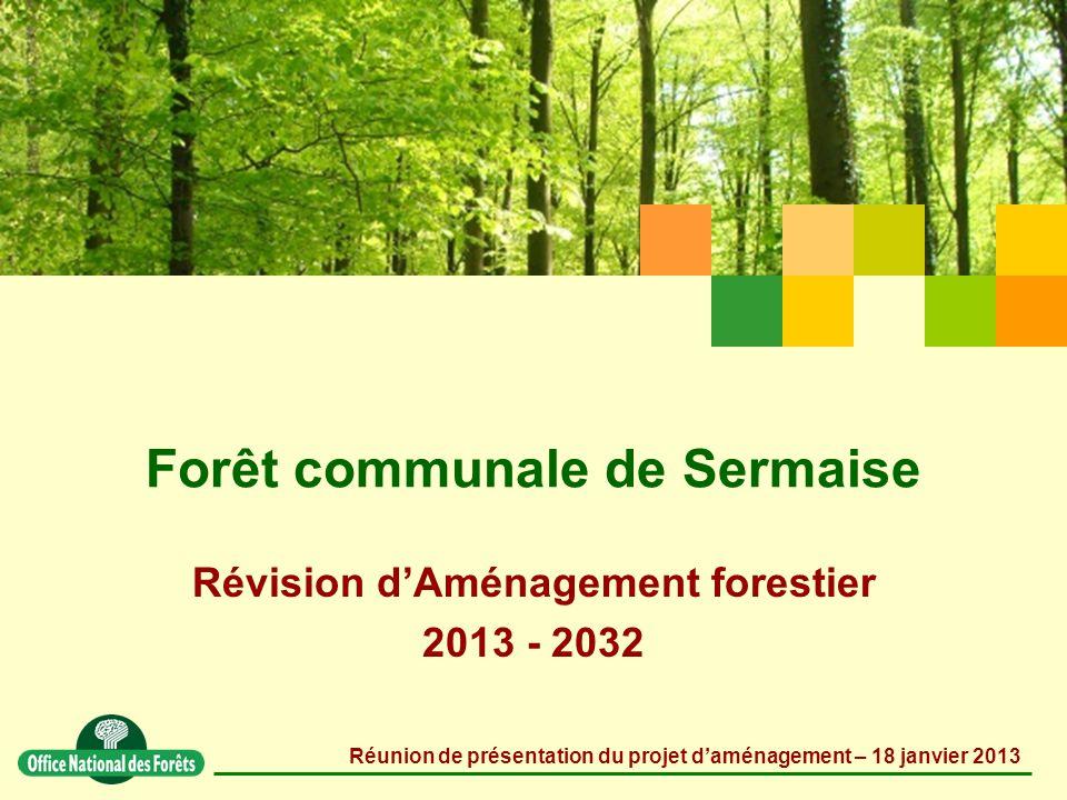 Forêt communale de Sermaise