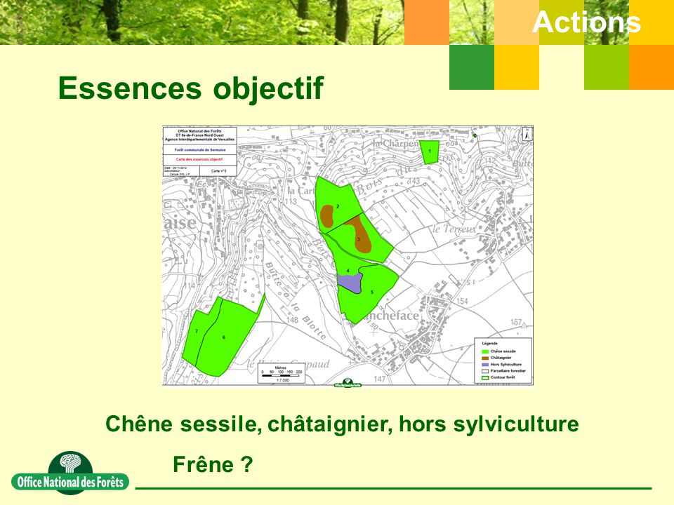 Essences objectif Actions