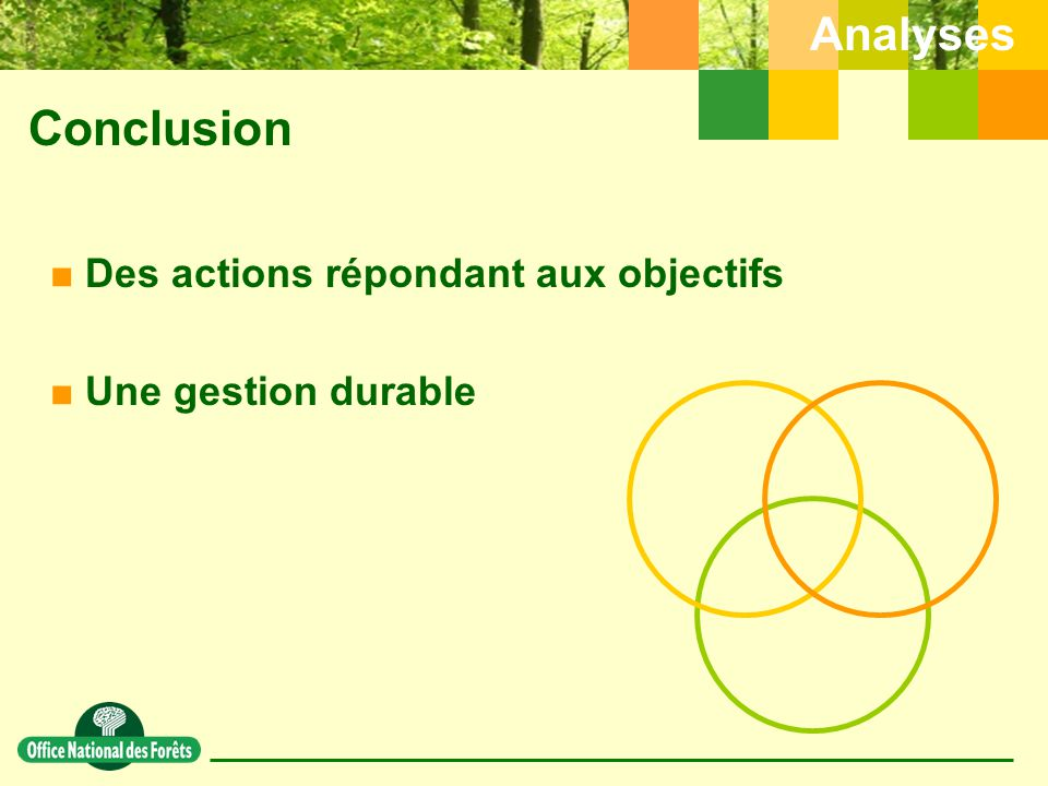 Conclusion Analyses Des actions répondant aux objectifs