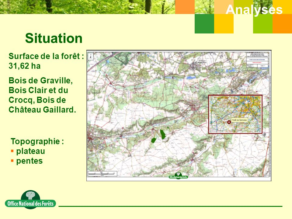 Situation Analyses Surface de la forêt : 31,62 ha