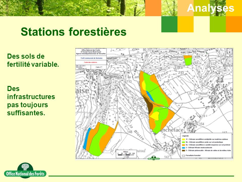 Stations forestières Analyses Des sols de fertilité variable.