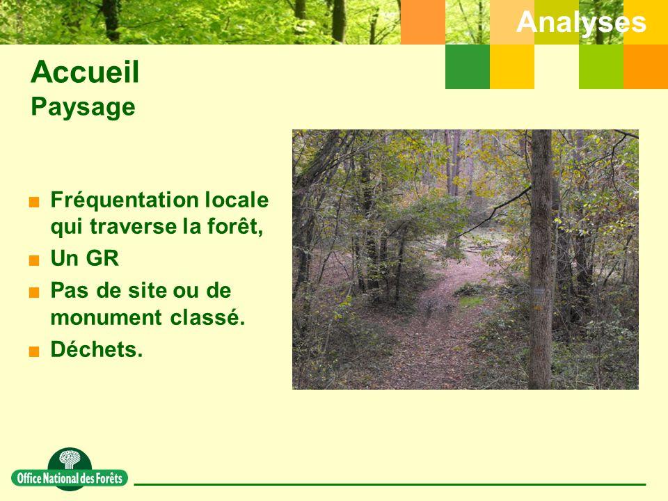 Accueil Paysage Analyses Fréquentation locale qui traverse la forêt,