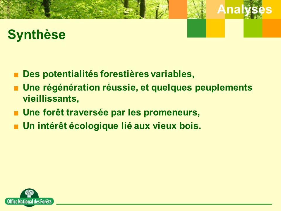 Synthèse Analyses Des potentialités forestières variables,
