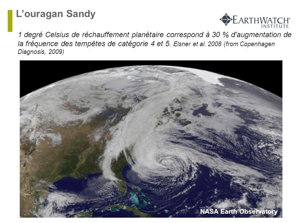 L'ouragan Sandy