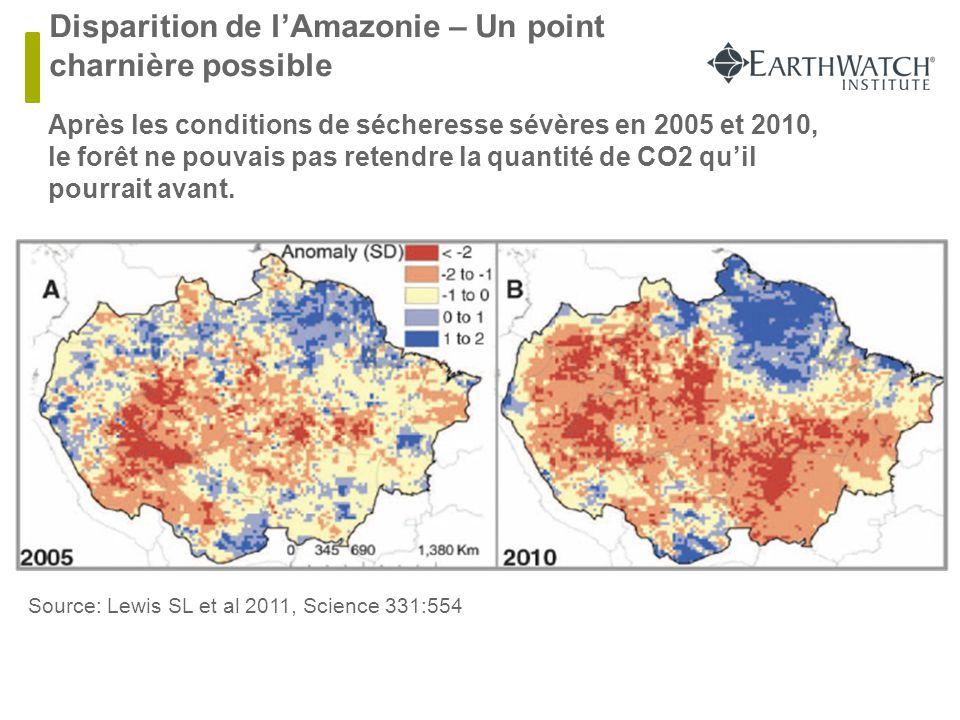 Disparition de l'Amazonie – Un point charnière possible