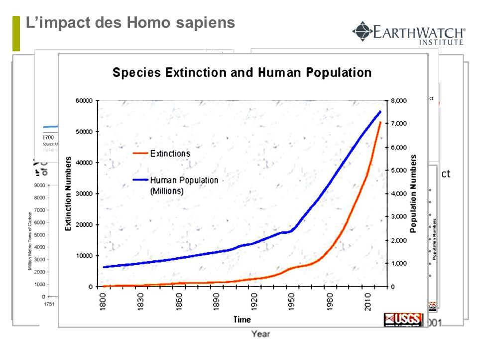 L'impact des Homo sapiens