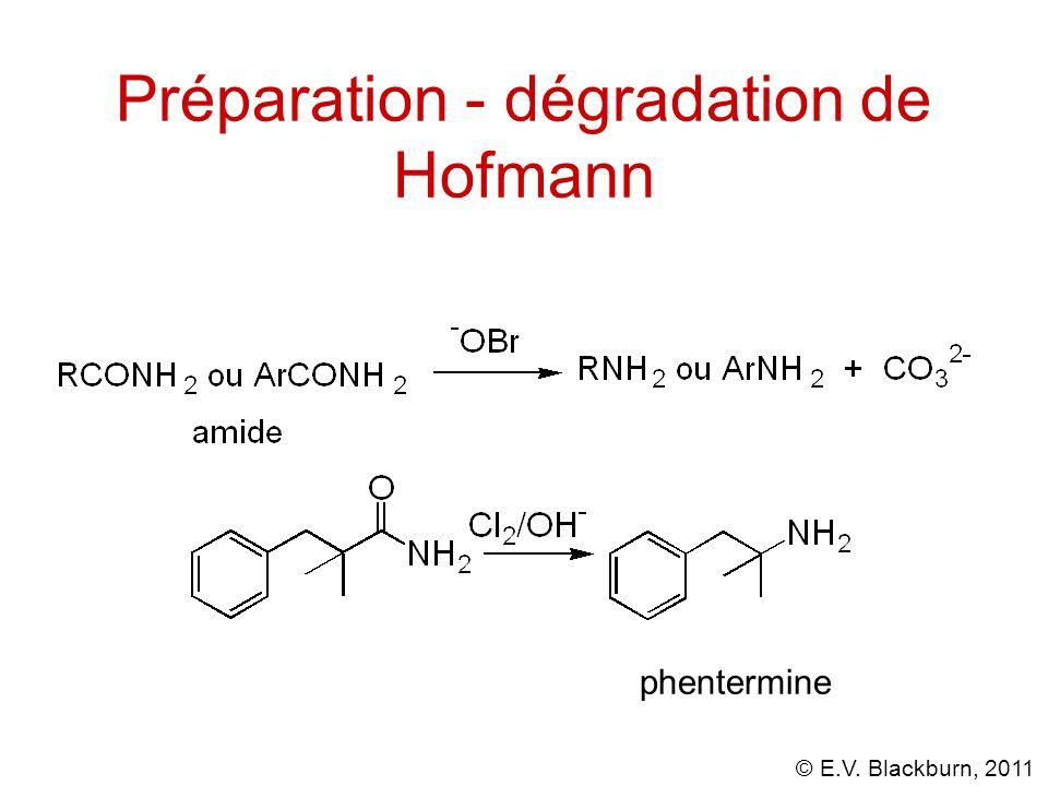 Préparation - dégradation de Hofmann