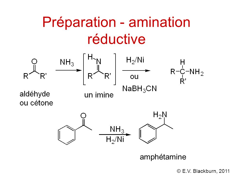 Préparation - amination réductive
