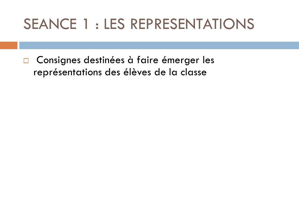 SEANCE 1 : LES REPRESENTATIONS