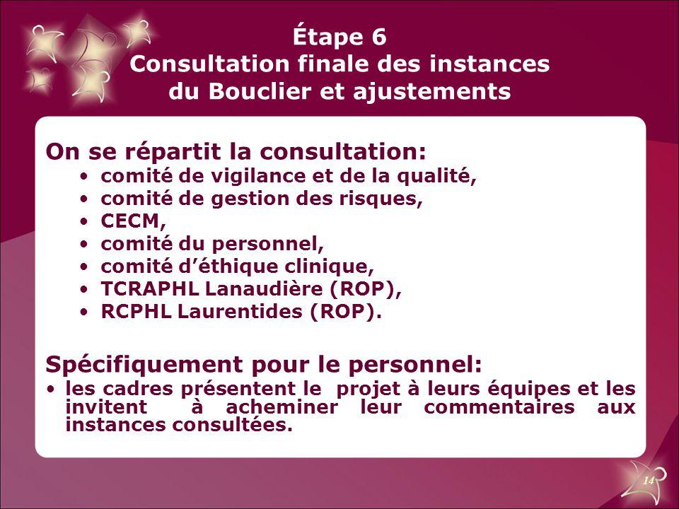 Étape 6 Consultation finale des instances du Bouclier et ajustements