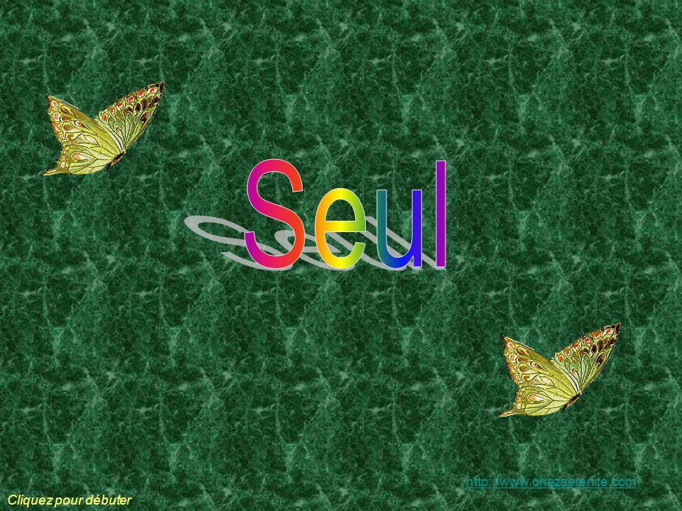 Seul http://www.chezserenite.com Cliquez pour débuter