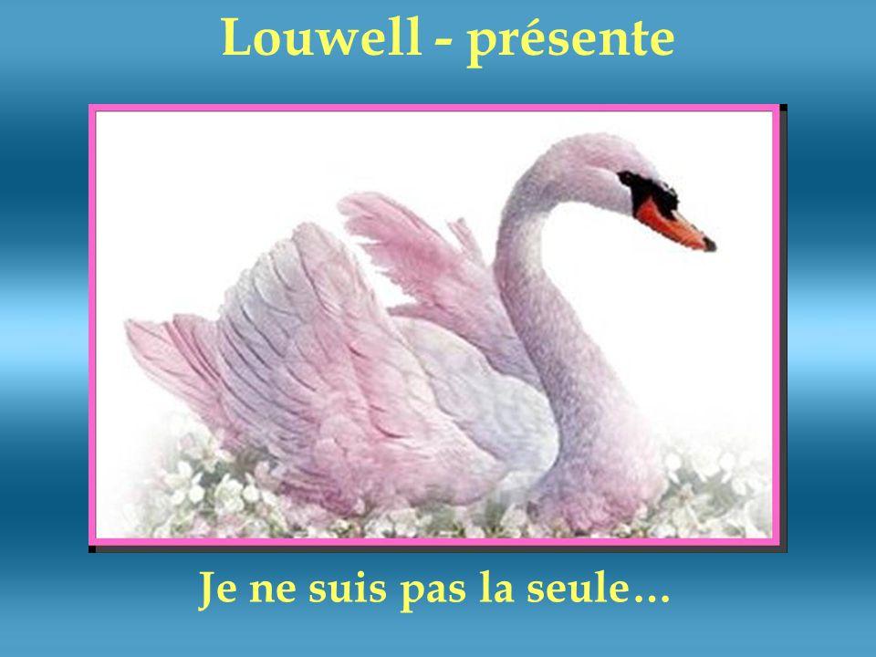 Louwell - présente Je ne suis pas la seule…