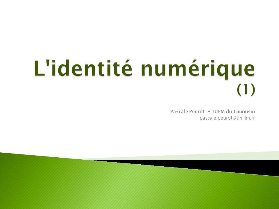 L identité numérique (1)