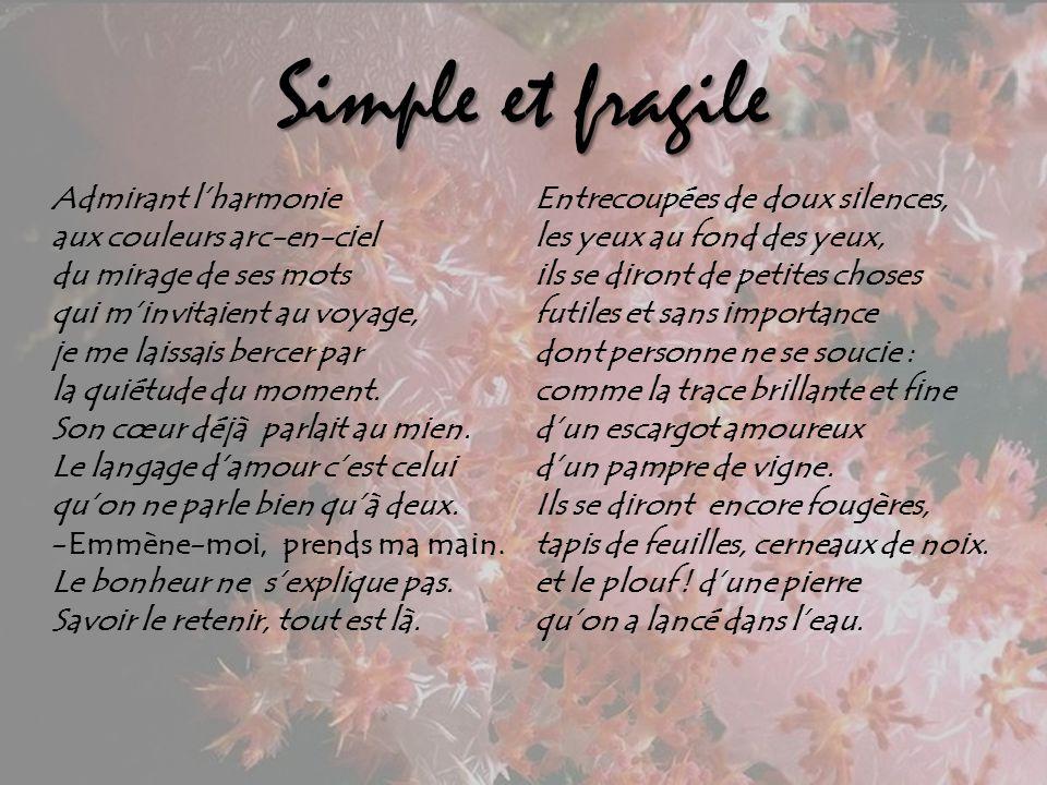 Simple et fragile