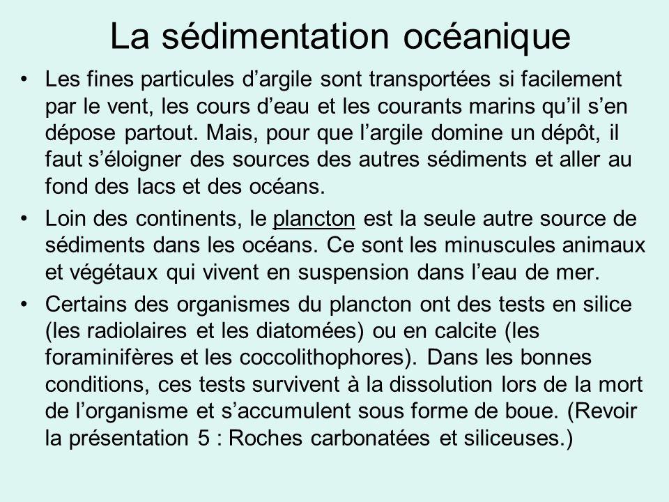 La sédimentation océanique
