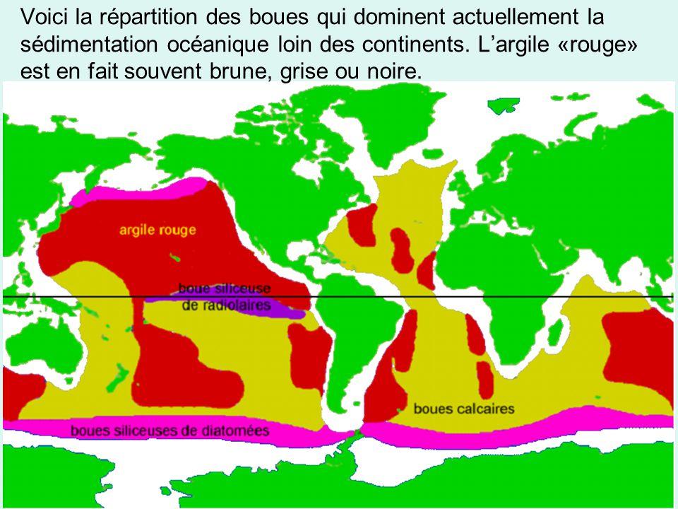 Voici la répartition des boues qui dominent actuellement la sédimentation océanique loin des continents.