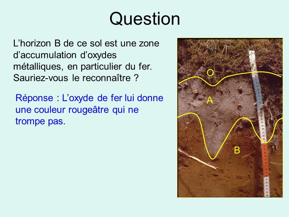 Question L'horizon B de ce sol est une zone d'accumulation d'oxydes métalliques, en particulier du fer. Sauriez-vous le reconnaître