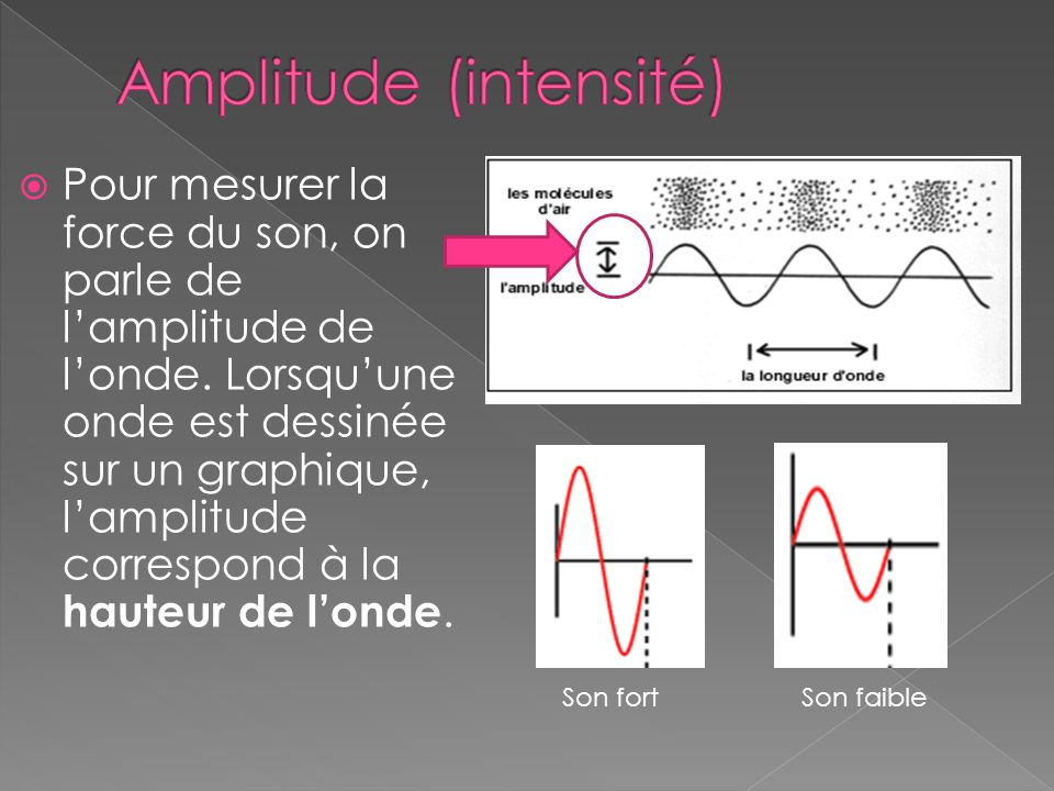 Amplitude (intensité)