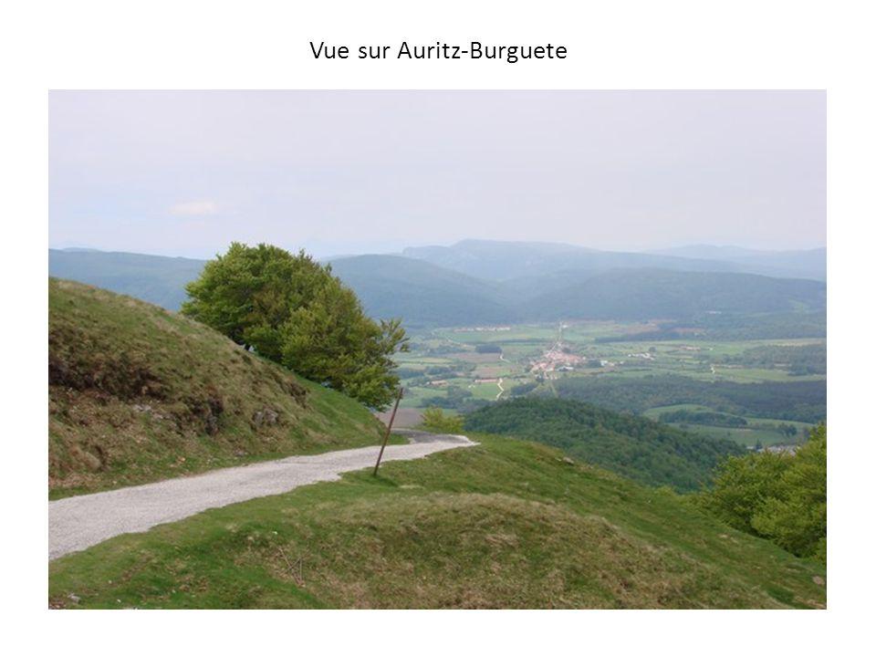 Vue sur Auritz-Burguete
